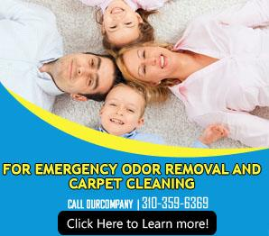 Water Removal - Carpet Cleaning Playa del Rey, CA